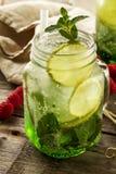 Νόστιμος κρύος φρέσκος πίνει τη λεμονάδα με το λεμόνι, τη μέντα, τον πάγο και τον ασβέστη ι Στοκ Εικόνες
