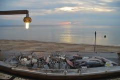 Νόστιμο γεύμα θαλασσίως Στοκ Εικόνες