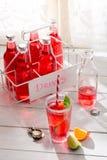 Νόστιμο κόκκινο θερινό ποτό στο μπουκάλι με το φύλλο μεντών στοκ εικόνα