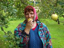 Νόστιμο μήλο 2 Στοκ εικόνα με δικαίωμα ελεύθερης χρήσης