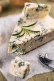 Νόστιμο μπλε τυρί στοκ εικόνα