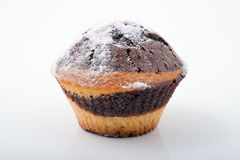 Νόστιμο πρόσφατα ψημένο muffin Ony Στοκ Εικόνες