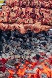 Νόστιμο ψημένο στη σχάρα κρέας στα οβελίδια μετάλλων στον ορειχαλκουργό το χειμώνα Ψημένο κρέας που μαγειρεύεται στη σχάρα BBQ φρ Στοκ φωτογραφία με δικαίωμα ελεύθερης χρήσης