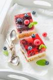 Νόστιμο cheesecake με τα φρέσκα βακκίνια και τα σμέουρα Στοκ φωτογραφίες με δικαίωμα ελεύθερης χρήσης