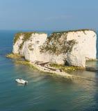 Νότια Αγγλία UK Studland Dorset απότομων βράχων κιμωλίας βρετανικών ακτών Στοκ Εικόνα