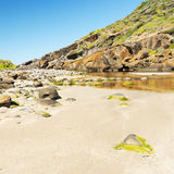 Νότια Αυστραλία χερσονήσων Fleurieu Στοκ Εικόνες