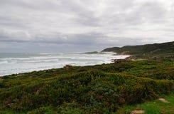 Νότια Αφρική, δυτικό ακρωτήριο, χερσόνησος ακρωτηρίων Στοκ φωτογραφία με δικαίωμα ελεύθερης χρήσης