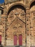 Νότια λεπτομέρεια πορτών καθεδρικών ναών Σαλαμάνκας Στοκ Φωτογραφίες