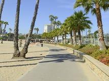 Νότια σκηνή παραλιών Καλιφόρνιας με την κυματωγή, τον ήλιο και τους φοίνικες Στοκ Φωτογραφία