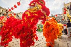 Νότιος χορός λιονταριών στη τελετή έναρξης ματιών, γυναικεία Thien Hau παγόδα, Βιετνάμ Στοκ εικόνα με δικαίωμα ελεύθερης χρήσης