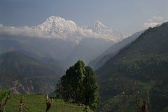 Νότος και Hiunchuli J Annapurna Στοκ φωτογραφία με δικαίωμα ελεύθερης χρήσης