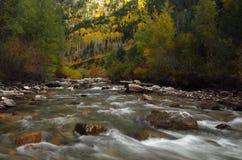 νότος ποταμών δικράνων στοκ εικόνες