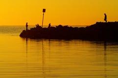 νότος της Αυστραλίας Στοκ Φωτογραφίες