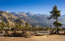 Νότος Annapurna peack στο Νεπάλ Ιμαλάια Στοκ φωτογραφίες με δικαίωμα ελεύθερης χρήσης