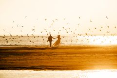 Νύφη και γύρος νεόνυμφων μακριά στο ηλιοβασίλεμα στοκ φωτογραφίες με δικαίωμα ελεύθερης χρήσης