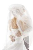 Νύφη και καλυμμένο νεόνυμφος πέπλο, φίλημα γαμήλιου ζεύγους, πίσω οπίσθιο τμήμα Στοκ εικόνα με δικαίωμα ελεύθερης χρήσης