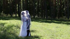 Νύφη και νεόνυμφος κάτω από ένα γαμήλιο πέπλο απόθεμα βίντεο
