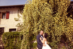Νύφη και νεόνυμφος που αγκαλιάζουν στη φύση Στοκ φωτογραφία με δικαίωμα ελεύθερης χρήσης