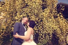 Νύφη και νεόνυμφος που αγκαλιάζουν στη φύση Στοκ Εικόνες