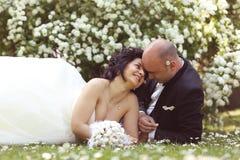 Νύφη και νεόνυμφος που βάζουν marguerite στον τομέα Στοκ Εικόνα