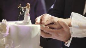 Νύφη και νεόνυμφος που κόβουν το γαμήλιο κέικ τους στενό χρωμάτων ύδωρ όψης κρίνων μαλακό επάνω απόθεμα βίντεο