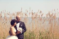 Νύφη και νεόνυμφος που περιβάλλονται από τη βιασύνη Στοκ φωτογραφία με δικαίωμα ελεύθερης χρήσης