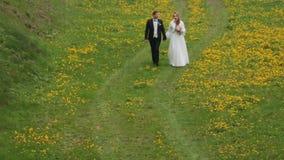 Νύφη και νεόνυμφος που περπατούν μαζί στον τομέα λουλουδιών απόθεμα βίντεο