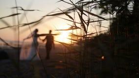 Νύφη και νεόνυμφος που περπατούν σε μια παραλία βραδιού απόθεμα βίντεο