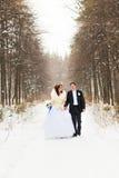Νύφη και νεόνυμφος στα χειμερινά ξύλα στοκ φωτογραφία με δικαίωμα ελεύθερης χρήσης