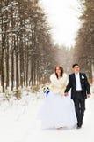 Νύφη και νεόνυμφος στα χειμερινά ξύλα στοκ εικόνα με δικαίωμα ελεύθερης χρήσης