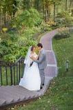 Νύφη και νεόνυμφος στη ημέρα γάμου που περπατούν υπαίθρια στη φύση άνοιξη Νυφικό ζεύγος, Στοκ φωτογραφία με δικαίωμα ελεύθερης χρήσης