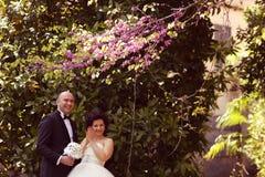 Νύφη και νεόνυμφος στη φύση Στοκ εικόνα με δικαίωμα ελεύθερης χρήσης
