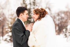 Νύφη και νεόνυμφος στο χειμερινό πάρκο στοκ φωτογραφία με δικαίωμα ελεύθερης χρήσης