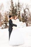 Νύφη και νεόνυμφος στο χειμερινό πάρκο στοκ εικόνα με δικαίωμα ελεύθερης χρήσης