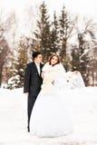 Νύφη και νεόνυμφος στο χειμερινό πάρκο στοκ φωτογραφίες