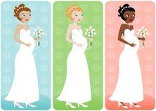νύφη κοιλιών διανυσματική απεικόνιση