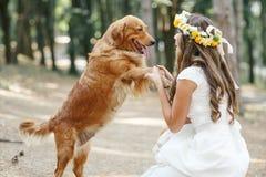 Νύφη με ένα σκυλί στο πάρκο Στοκ εικόνες με δικαίωμα ελεύθερης χρήσης
