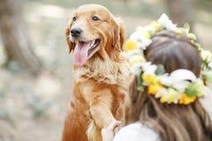 Νύφη με ένα σκυλί στο πάρκο Στοκ Εικόνες
