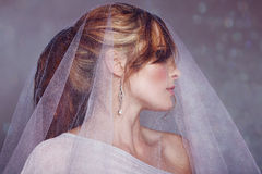 Νύφη με το άσπρο πέπλο στοκ εικόνες με δικαίωμα ελεύθερης χρήσης