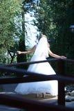 Νύφη που περπατά σε μια πράσινη αλέα Στοκ Φωτογραφία