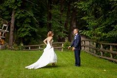 Νύφη που πηγαίνει να καλλωπίσει στο δάσος στοκ εικόνες