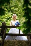 Νύφη στο γαμήλιο φόρεμα ομορφιάς που στέκεται στη γέφυρα Στοκ Φωτογραφίες