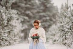 Νύφη στο χειμερινό δάσος Στοκ Εικόνες