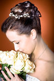 Νύφη hairstyle στοκ εικόνες με δικαίωμα ελεύθερης χρήσης