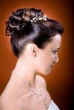 Νύφη hairstyle στοκ εικόνα