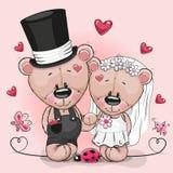 Νύφη Teddy και νεόνυμφος Teddy σε ένα ρόδινο υπόβαθρο διανυσματική απεικόνιση