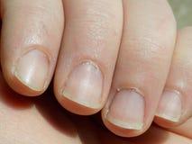 Νύχια από στενό επάνω Στοκ Εικόνα