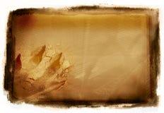νύχι Στοκ εικόνες με δικαίωμα ελεύθερης χρήσης