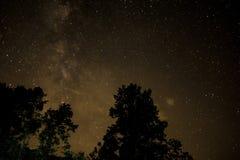 νύχτα έναστρη Στοκ Εικόνα