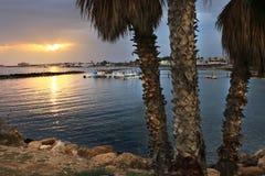 νύχτα ήλιων κόλπων ηλιοβασιλέματος παραλιών θάλασσας φοινικών στοκ φωτογραφίες